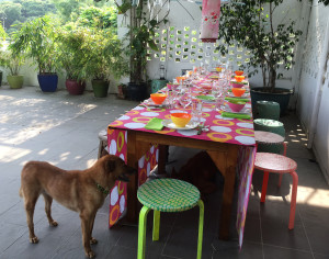 Table laid with dog